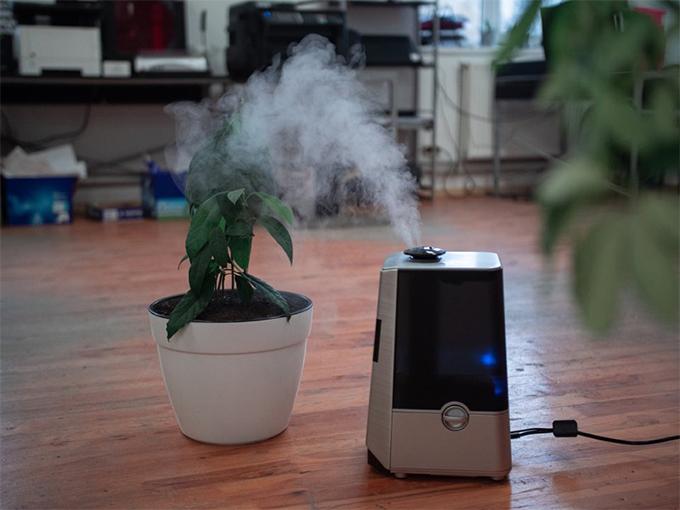 ちょっとした工夫で風邪を予防!貸し会議室での湿度管理のアイデア